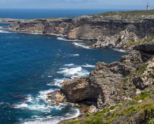 kangoroo-island4
