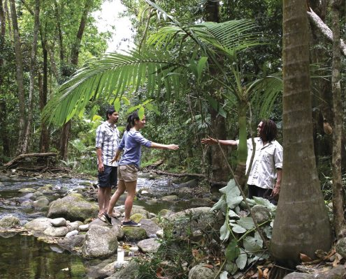Guide local aborigène près de Mosmann